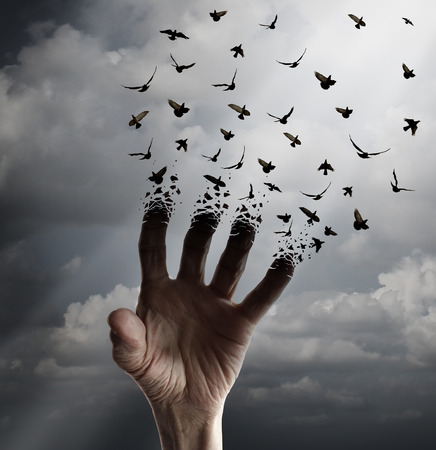 Photo for Life transformation concept as a hand reaching out tranforming into flying birds following sunlight as a freedom symbol of hope renewal and spirituality or human faith. - Royalty Free Image