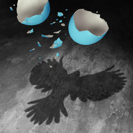 Photo pour Concept of freedom as a falling broken egg shell in the air creating a cast shadow of a bird with open wings as a positive motivation metaphor for transformation success and determination to succeed. - image libre de droit