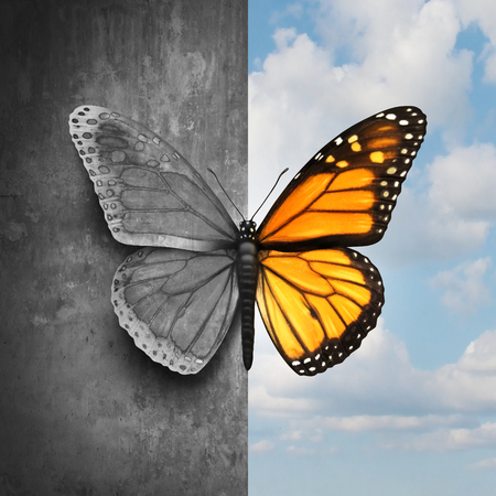 Foto de Bipolar mental disorder abstract psychological illness concept as a butterfly divided as one side in grey and sad colors with the other in full bright tones as a medical metaphor for psychiatric mood or feelings imbalance. - Imagen libre de derechos