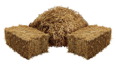 Foto de Piles of hay isolated on a white background as an agriculture farm and farming symbol of harvest time with dried grass straw as a mountain of dried grass haystack. - Imagen libre de derechos