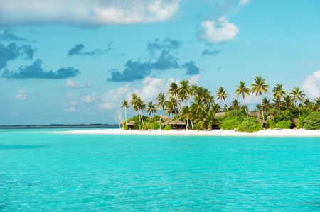 Photo for Tropical white sand beach with palm trees - Royalty Free Image