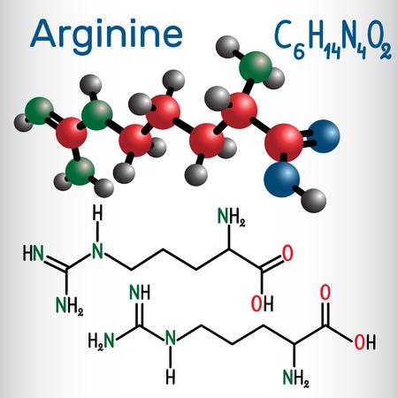 Illustration pour Arginine  chemical formula and molecule model. - image libre de droit