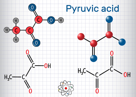 Illustration pour Pyruvic acid (pyruvate) molecule. It is the simplest of the alpha-keto acids. Structural chemical formula and molecule model. Sheet of paper in a cage. Vector illustration - image libre de droit