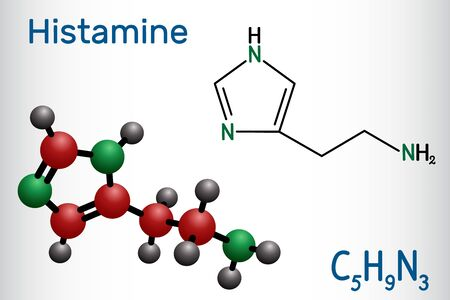 Illustration for Histamine molecule. It is amine, nitrogenous compound, stimulant of gastric secretion, vasodilator, and centrally acting neurotransmitter. Structural chemical formula and molecule model. Vector illustration - Royalty Free Image