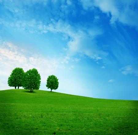 three trees on the green field