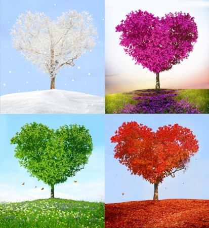 Photo for Tree of love in for season - Royalty Free Image
