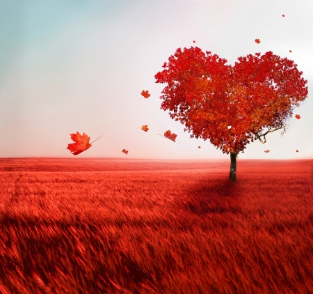 Photo pour Tree of love  - image libre de droit