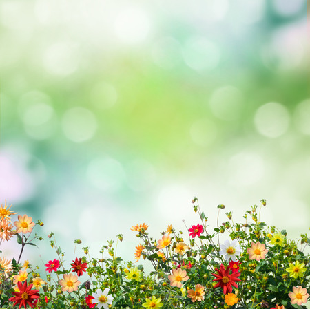 Foto de summer background - Imagen libre de derechos