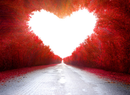 Photo for road to love - Royalty Free Image