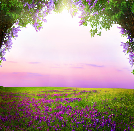 Photo for Fantasy  background . Magic forest.Beautiful spring  landscape.Lilac trees in blossom  - Royalty Free Image