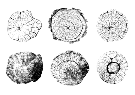 Illustration for Top view of tree stumps isolated on white background. Set of natural round wooden textures. Black and white vector illustration.Cut trunks icons with annual rings - Royalty Free Image