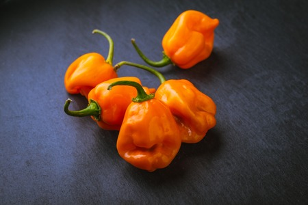 Photo pour Grouping of raw orange habaneros on a slate surface - image libre de droit
