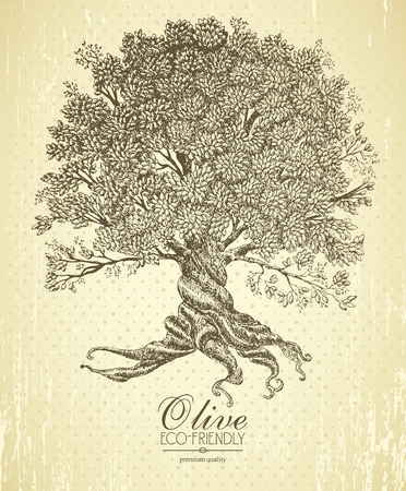 Illustration pour Olive tree with roots on rough background. Arbor day poster in vintage style. - image libre de droit