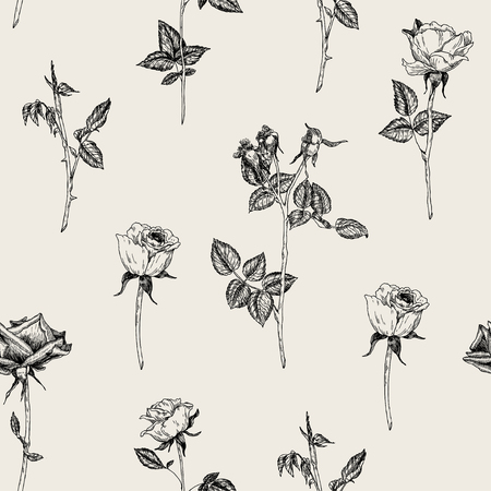 Ilustración de Vector seamless hand drawn pattern with roses in vintage graphic style. Gentle decoration pattern for paper, textile, handmade, wrapping decoration, scrap-booking, polygraphy, t-shirt, cards. - Imagen libre de derechos