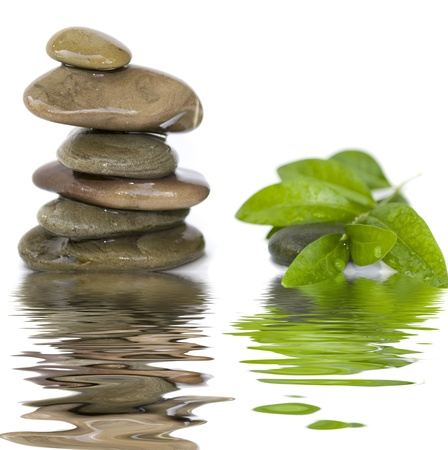 balanced spa stones with green plant and water reflection isolated on white background