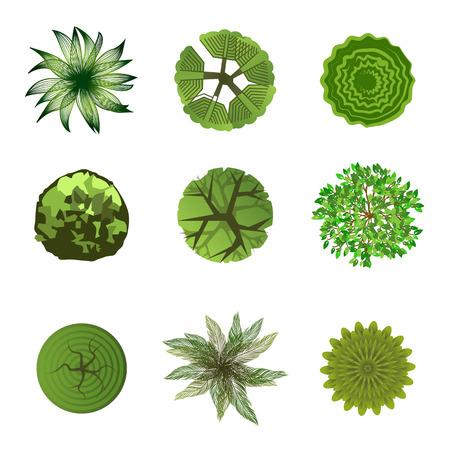 Illustration pour Trees top view for landscape design  Use in your design projects  - image libre de droit