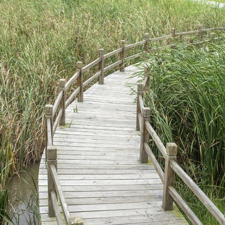 Photo pour wooden walkway in park - image libre de droit