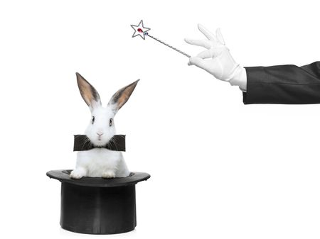 A rabbit and a magic wand against white background
