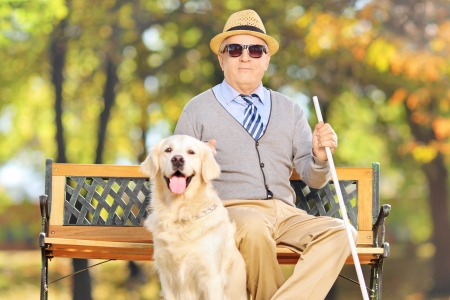 Photo pour Senior blind gentleman sitting on a bench with his labrador retriever dog, in a park - image libre de droit