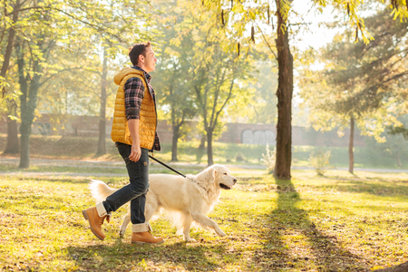 Photo pour Profile shot of a young guy walking his dog in a park on a sunny autumn day - image libre de droit