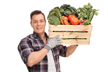 Young male farmer carrying a wooden crate full of fresh vegetables isolated on white background