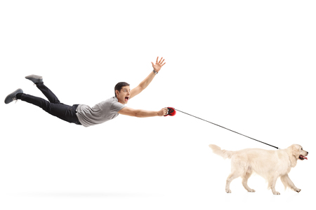 Photo for Guy being pulled by his dog isolated on white background - Royalty Free Image