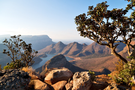 Photo pour blur  in  south africa  blyde river canyon plant rock and pond water    - image libre de droit