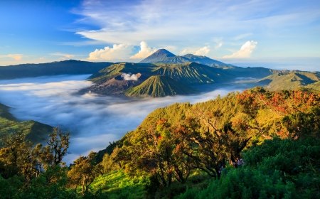 Photo pour Bromo vocalno at sunrise, East Java, , Indonesia - image libre de droit