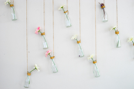 Photo for Flower in bottle on white wall backdrop - Royalty Free Image