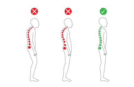 Illustration for Correct alignment of human body in standing posture for good personality and healthy of spine and bone. Health care and medical illustration - Royalty Free Image