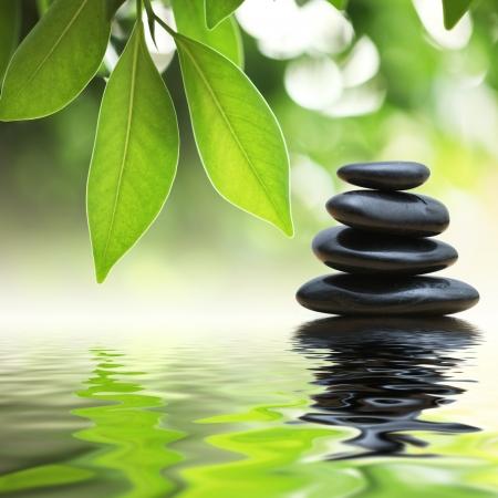 Photo pour Grean leaves over zen stones pyramid on water surface - image libre de droit