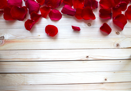 Photo for Rose Petals Border - Royalty Free Image