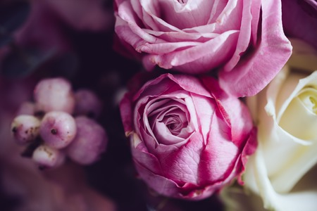 Foto de Elegant bouquet of pink and white roses on a dark background, soft focus, close-up. Romantic hipster background. Vintage filter. - Imagen libre de derechos