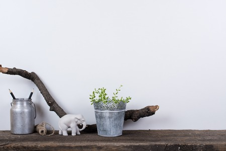 Photo pour Scandinavian style home decor with plants on a rustic wooden board and white wall background. - image libre de droit
