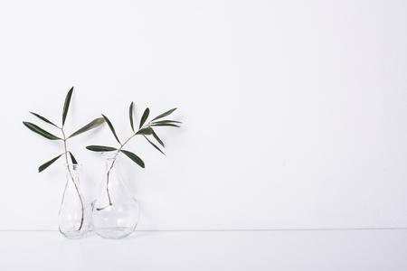 Photo pour Two olive branches in glass bottles - image libre de droit