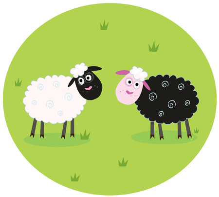 Black and white sheep. The difference - oposite sheep, black and white. Stylized  cartoon Illustration.