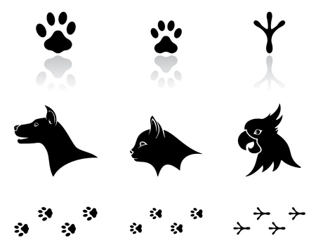 Set of black animal icons on white background, illustration.