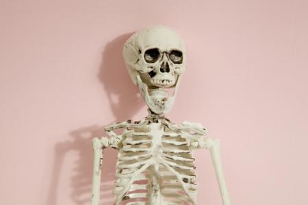Photo pour Isolated plastic toy skeleton a a vibrant pop pink background. Minimal color still life photography - image libre de droit