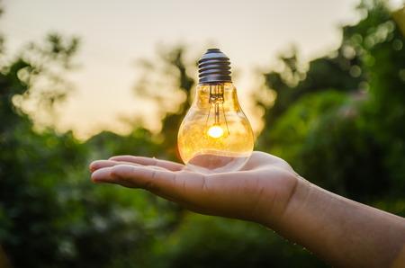 Foto de light bulb against sunset nature background. power concept - Imagen libre de derechos