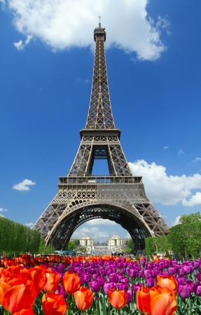 Photo pour tour eiffel in Paris - image libre de droit