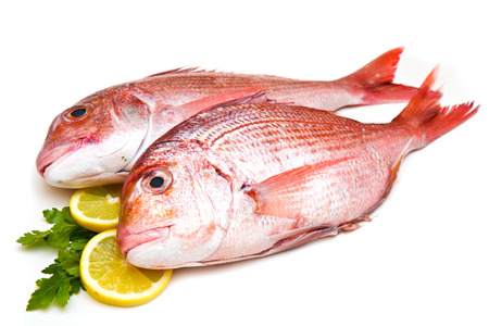 Foto de Raw porgy on white background - Imagen libre de derechos