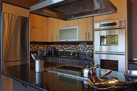 modern luxury kitchen with stainless and granite