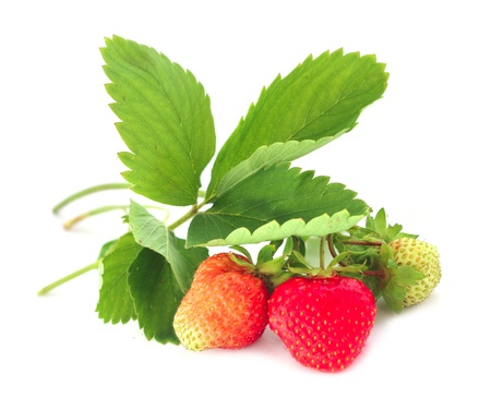 Photo for Strawberry with leaves isolated on white background - Royalty Free Image