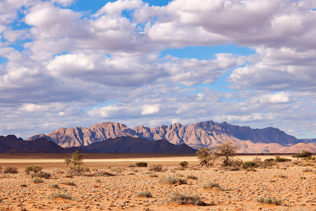 Photo for Beautiful Namibia landscape photographed at the first lights of the day - Royalty Free Image