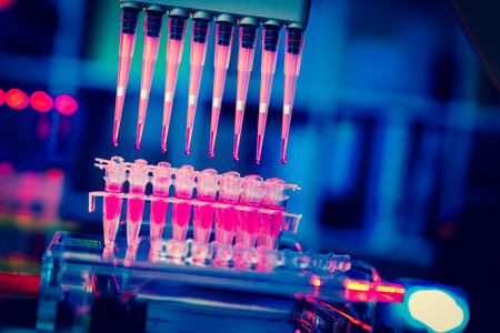 Foto de multi pipette    research of cancer stem cells - Imagen libre de derechos