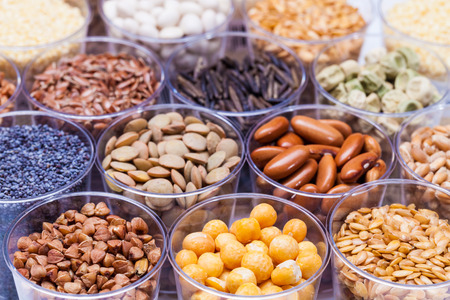 Foto per agricultural grains and legumes in the laboratory - Immagine Royalty Free