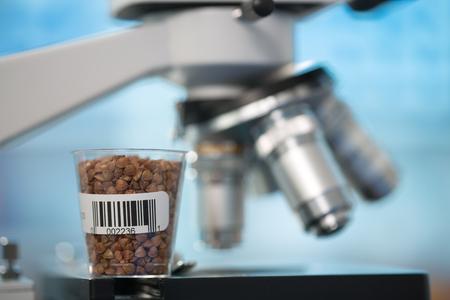 Foto de Seeds and cereals in the laboratory of food quality - Imagen libre de derechos