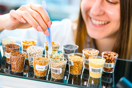 Photo for GMO research of cereals in laboratory - Royalty Free Image