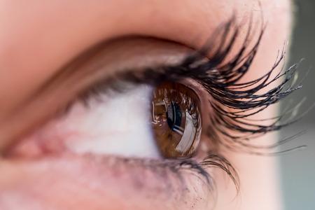 Foto de Human eye closeup - Imagen libre de derechos
