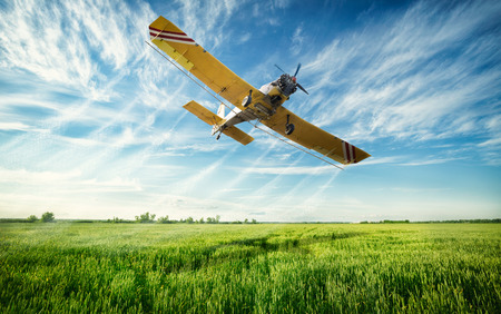 Photo pour Agriculture, low flying yellow plane sprayed crops in the field - image libre de droit
